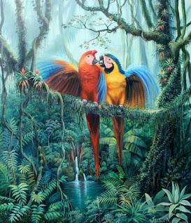 Paisajes Salvajes Selva Natural Pinturas
