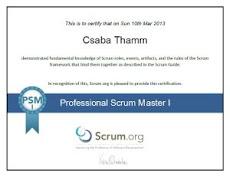 Professional Scrum Master I Certificate