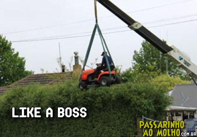 like a boss, cortador de grama, guindaste