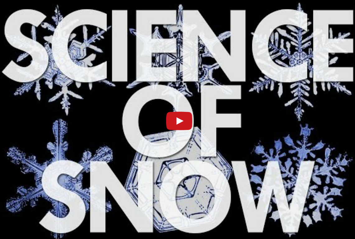 The Science of Snowflakes