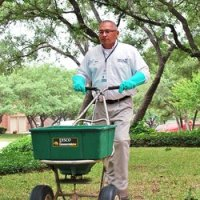 best organic lawn fertilizer picture