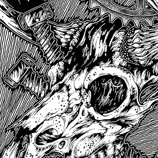 Ash of Cedars