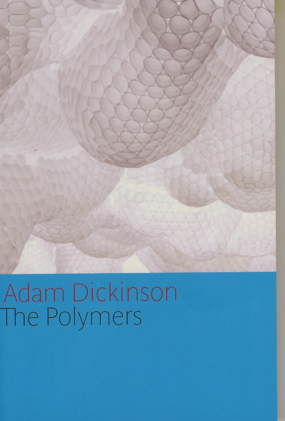 His Most Recent Collection, The Polymers (House Of Anansi Press, 2013), Was  A Finalist For The 2013 Governor Generalu0027s Award For Poetry.
