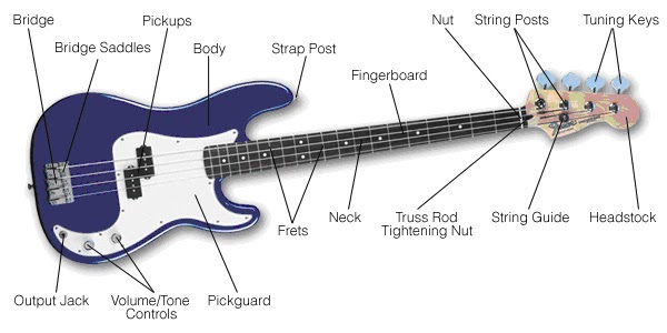 Bass Guitar Parts - Free Music Lessons - All About Music