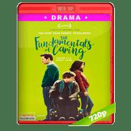 Los principios del cuidado (2016) WEB-DL 720p Audio Dual Latino-Ingles