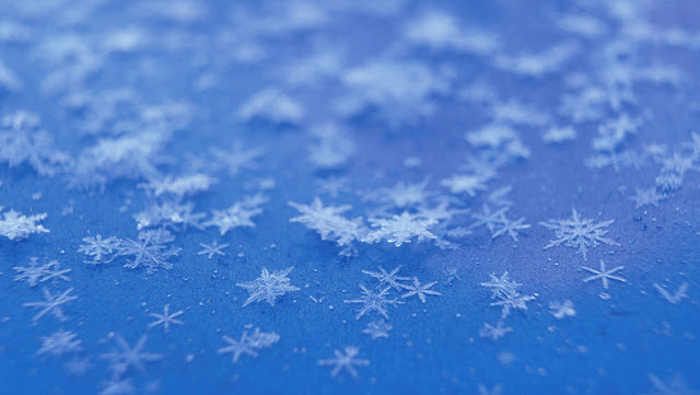 Best Winter Snowflakes HD Wallpaper