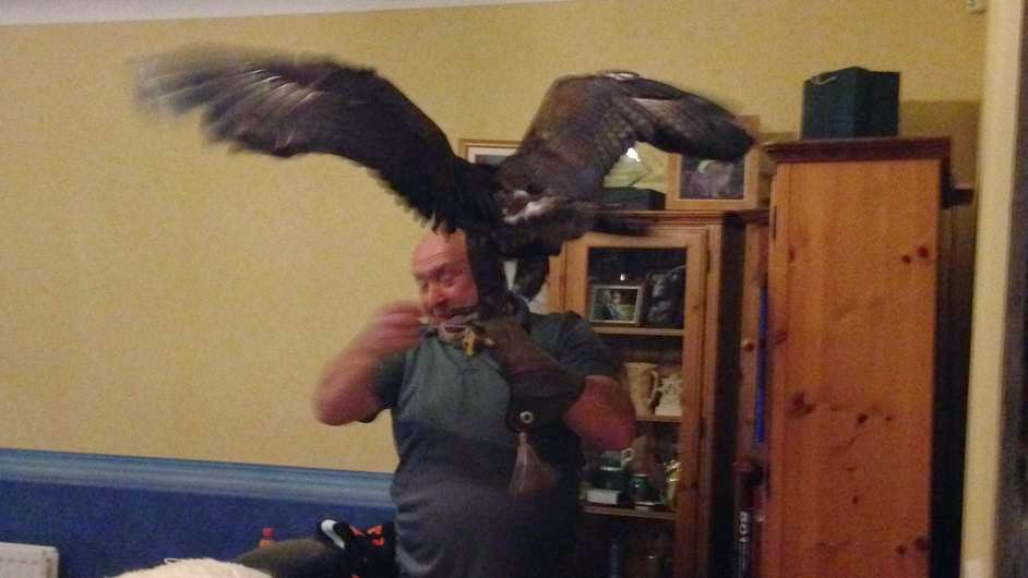 http://news.sky.com/story/1278957/the-eagle-has-landed-in-my-living-room