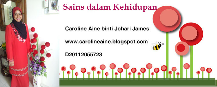 MY NAME IS CAROL JAMES