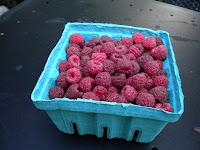 raspberries 2B003