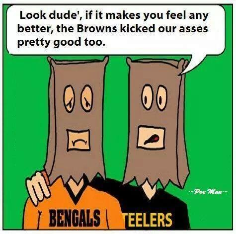 Look dude', if it makes you feel any better, the browns kicked our asses pretty good too
