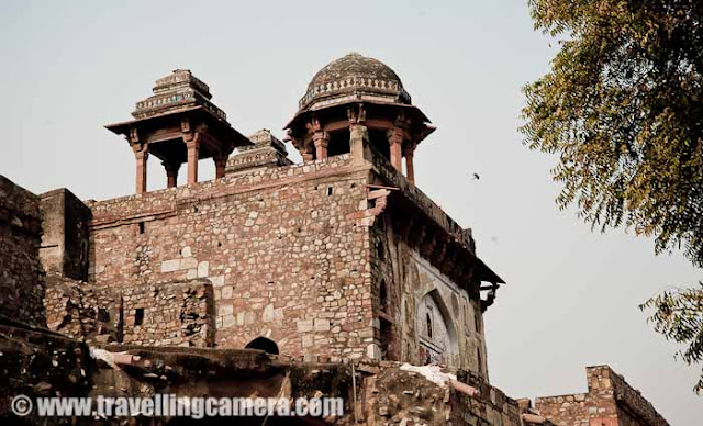 Purana Qila (Old Fort) - Relieved of its bloody past : Delhi, INDIA : Purana Qila was constructed in the 16th century and within the first 25 years of its construction, passed from one ruler to the other and saw many great kings die of accidents and war. As of now, the Qila still stands tall right next to the Delhi Zoological Gardens and is often the venue for concerts etc. It also hosts a sound and light show after sunset that showcases the history of the seven cities of Delhi.The architecture is mostly Mughal with intricate carvings and domes. However, the qila was briefly captured by Hemu, the Hindu king. He was coronated in the qila and after his death in the second battle of Panipat, his torso was hung outside the qila as a warning. Unimpressed by the bloody history of the Qila, delhites now endorse it as a place of solitude and romance.Chhatris on the North Gate. The North gate is also known as the Talaqi Darwaza or the forbidden gate. Grounds around the quila could do with some landscaping. Imagine if this patch had lush green grass, how beautiful would the entire scene be.Some work is ongoing. But I think, we need more workforce to be employed in the area and more investment in the upkeep. Some lessons can be learnt from the way Qutb Minar complex is maintained.A lone cyclist on the road next to the qila complex. Visible in the background is the Sher Mandal which has some interesting (read bloody) history of its own.Arches, domes and chhatris are the sure signs of Mughal architecture coupled with red stones. Some of the most imposing monuments in India are Mughal.Typical door of a Mughal building. Very interesting and photogenic. Some at Humanyun's Tomb which is visible from the Humanyun Gate at Purana qila have stars and flowers on them. Qila-i-kuhna mosque in the complex. It is the best preserved building in the complex today.The five arches of the mosque are clearly visible in this picture. The complex itself is spacious and open. An ideal place for a walk when it's not too hot.Close up of some of the carvings on the walls. Typical flower carvings that set the Mughal architecture apart from the rest of the architecture of the era.Another place where some work is going on. It must take a lot of determination and alertness to maintain a building that is almost crumbling.The Sher mandal which was built as an observatory. This was also the place where the emperor Humanyun met with his untimely death after a fatal accident when he slipped on the stairs while going for the evening Namaz.There are very few places in Delhi where young couple can have some time to themselves where they are not harrassed by police or transgenders. I'm not sure what the situation in the Purana qila complex is like. But I did see many young couples sitting and chatting.The common myna which is usually seen in pairs. In fact, if you see one without a partner, it is supposed to bring bad luck. However,  this one brought me good luck as I got some excellent shots from this excursion.The quitessential snack vendor. Though it is nice to see an absence of litter around him. There is a museum inside Old Fort Campus !!!The small lake next to the qila which is a popular boating location. The qila in fact was built on the banks of the river Yamuna. The river seems to have receded or changed course now.A child chilling around in the complex. Time to move towards parking area and go back home !!!Connaught Place @ Delhi, INDIA, Red fort (Lal Quila) @ Delhi, INDIA  Qutub Minar @ Delhi, INDIA India Gate @ Delhi, INDIAPresident's House @ Delhi, INDIALotus Temple @ Delhi, INDIASafdarjung Tomb @ Delhi, INDIAHumayun's Tomb @ Delhi, INDIAOld Fort (Purana Quila) @ Delhi, INDIALodhi Garden @ Delhi, INDIAZOO @ Delhi, INDIA