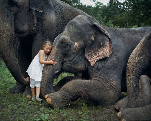 Portraits of A Girl With Wild Animals