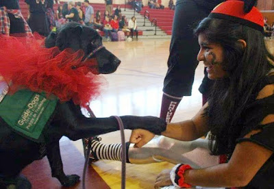 black Lab in red tutu shaking paws with a female friend