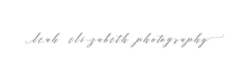 Leah Elizabeth Photography   Columbia SC   Portrait Photographer