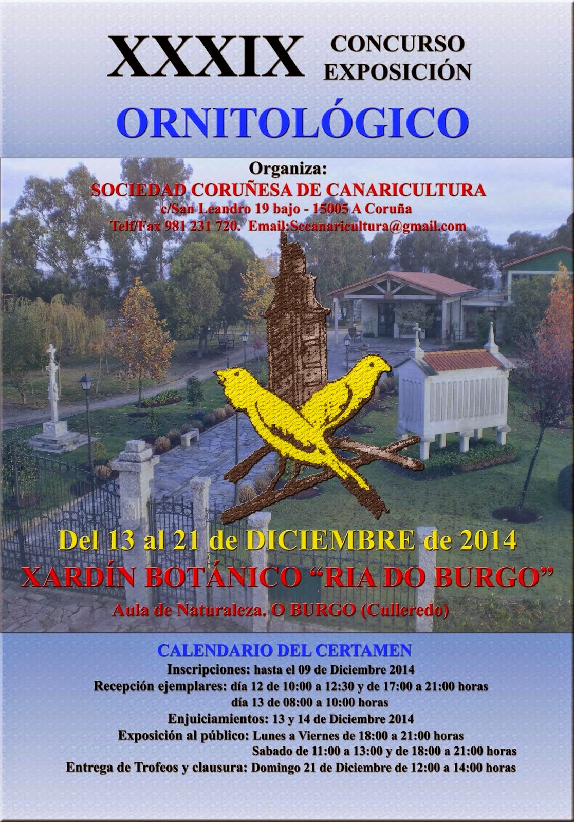 Cartel%2Bcoru%C3%B1a%2B-Canaricultura2014.jpg
