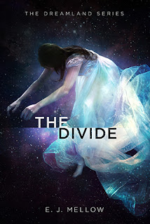 https://www.goodreads.com/book/show/25280890-the-divide
