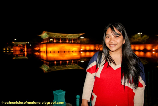 Anapji Pond blogger