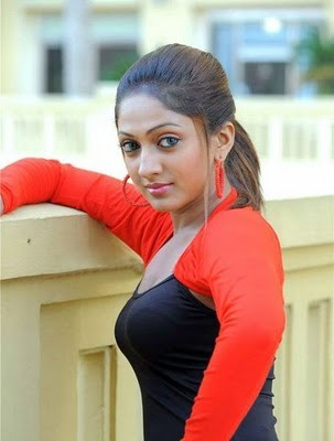 Sexy Model And Actress Sheela Hot Picture,Sexy Tamil Telugu Girl Photo