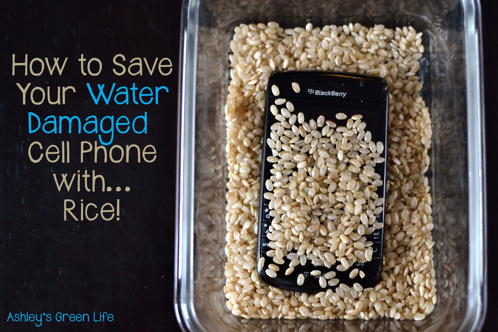 ashley 39 s green life save your water damaged cell phone with rice. Black Bedroom Furniture Sets. Home Design Ideas