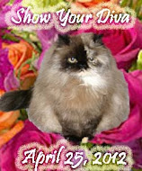 Show Your Diva Today
