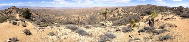Panorama north from highpoint 5160', Black Rock Canyon, Joshua Tree National Park