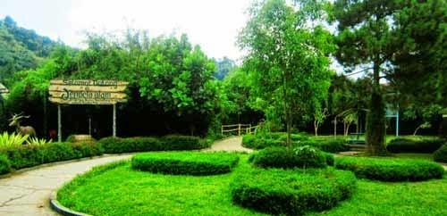 Wisata Jendela Alam
