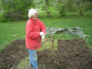 Digging the pumpkin patch