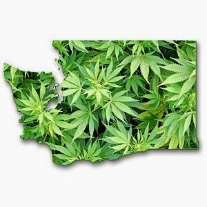 legalização da maconha nos EUA