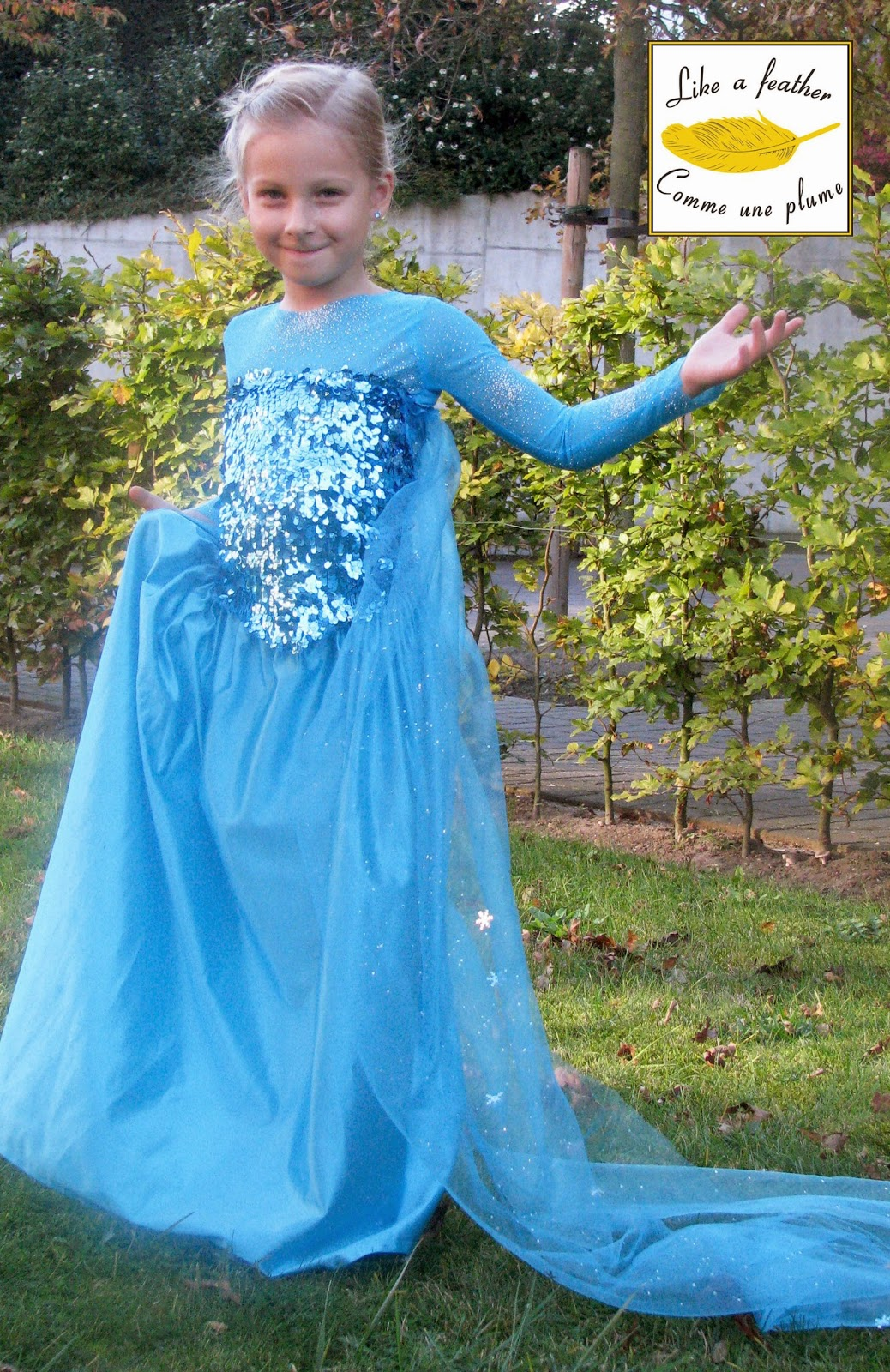 The costume is made of three separate parts.  sc 1 st  Like a feather & Queen Elsau0027dress (Frozen)