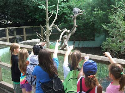 Visit Franklin Park Zoos