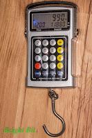 Multifunction Electronic Hanging Scale backlit display