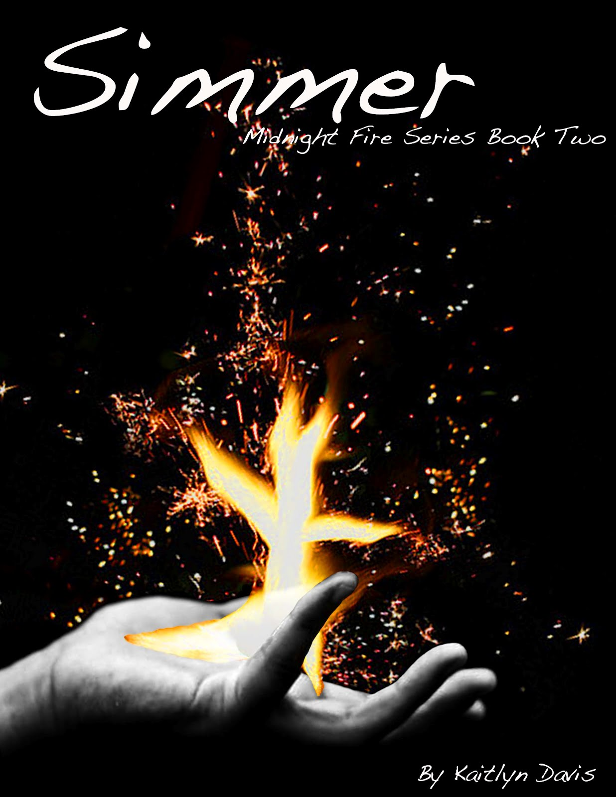 vvb32 reads: Ignite and Simmer by Kaitlyn Davis