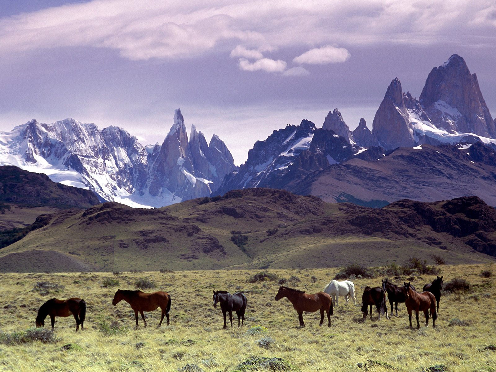 Andes ~ Beautiful Places In The World