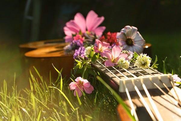Música vida