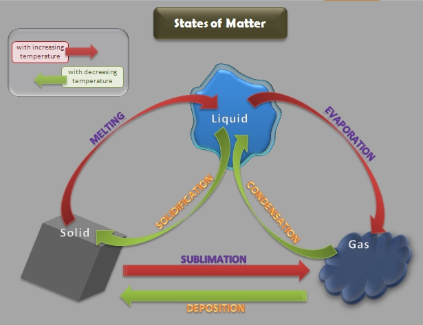 pin matter diagram on pinterest Hierarchy of Matter Organic Matter