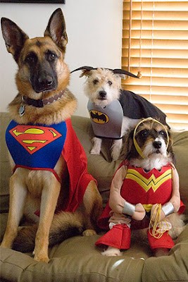 Superperros Disfraces Para Mascotas