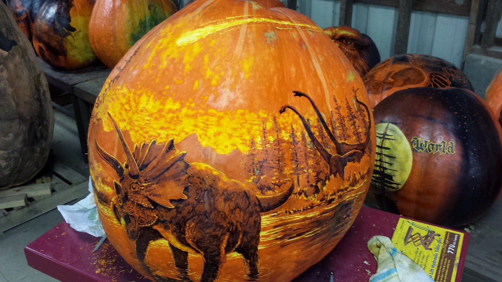 Images about pumpkin carving on pinterest