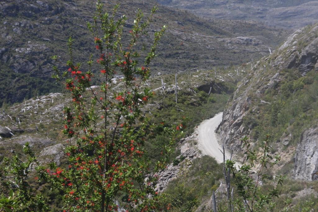 Sopi Los Andes: Carretera Austral