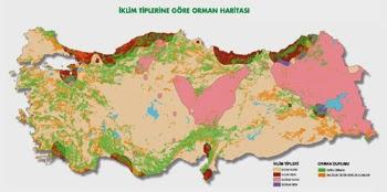 T�rkiye'de �klim Tiplerine G�re Ormanlar�n Da��l�� Haritas�