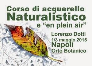 Corso Disegno Naturalistico, Napoli