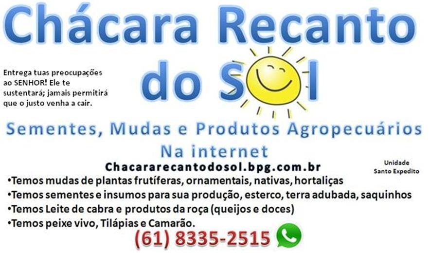 cerca viva em brasilia