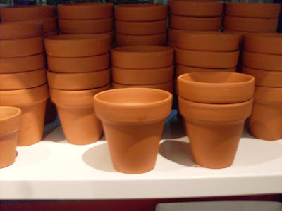 Regando los tiestos maceta de tiramis tierra de cacao y Macetas ceramica online