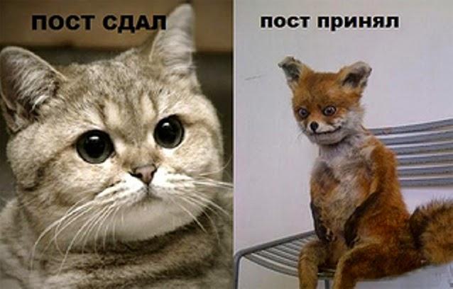 Гена ебашь пост рок Троллфейс комиксы, картинки, фото и мемы смотрит
