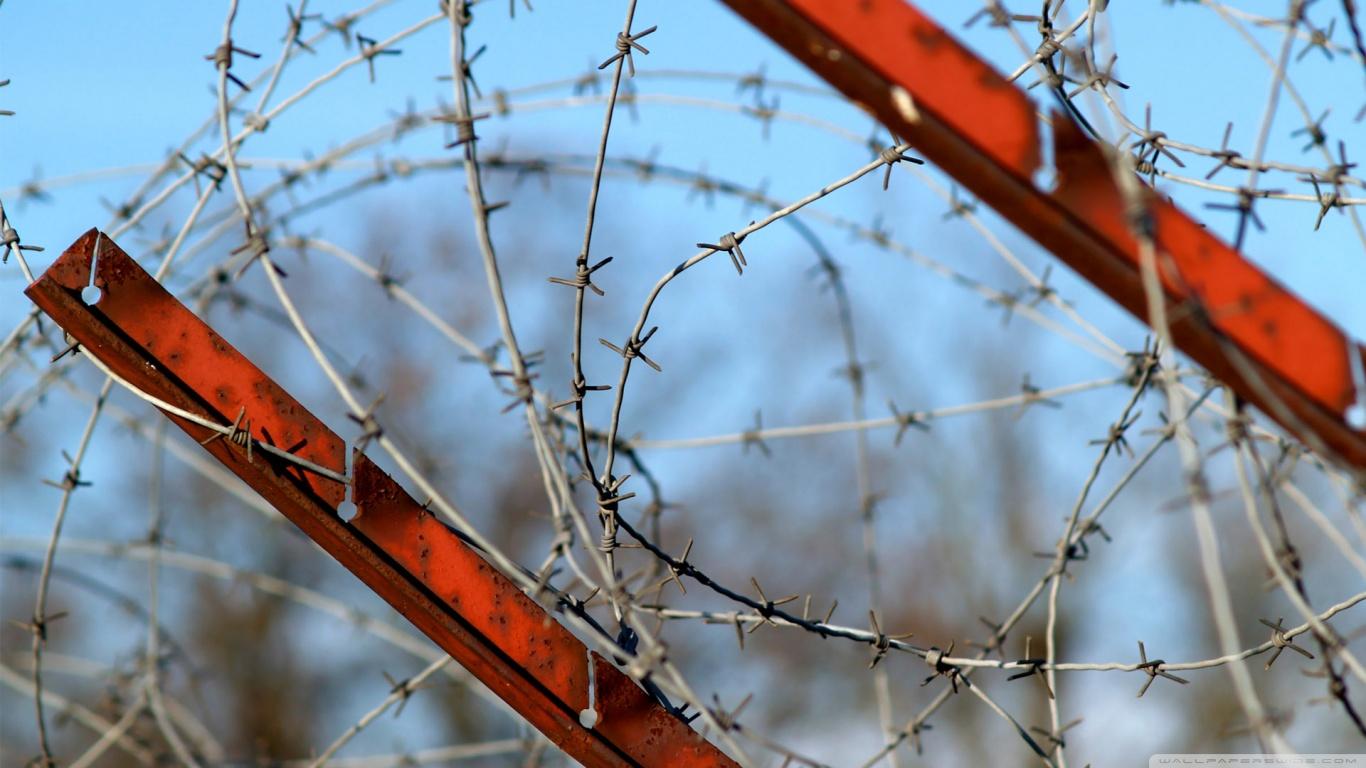 Колючая проволка на заборе  № 1701906 без смс