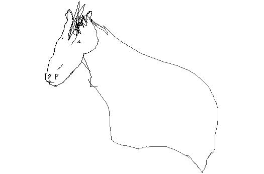 horseghost
