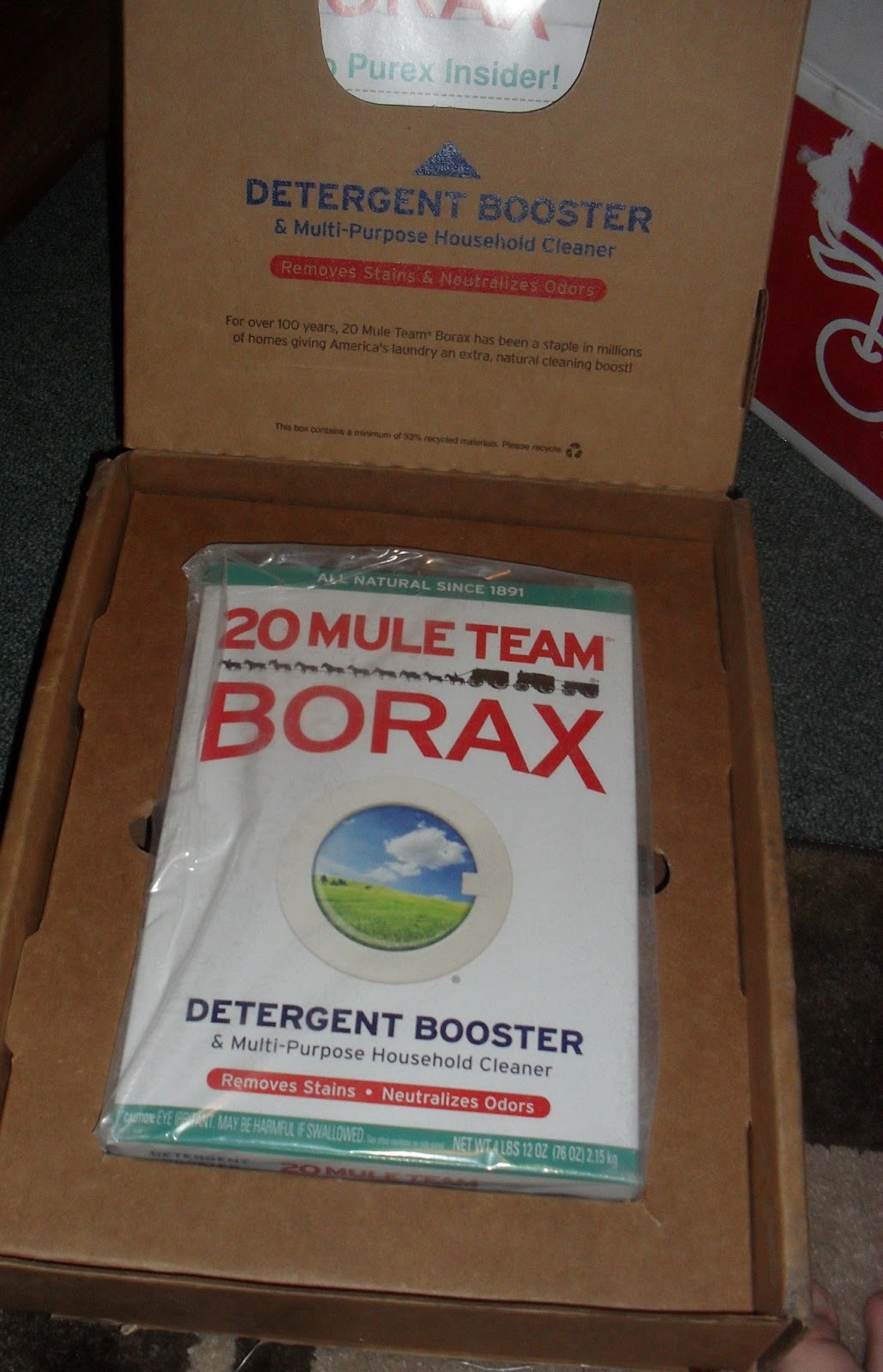 Simply Me 20 Mule Team Borax Review And Giveaway