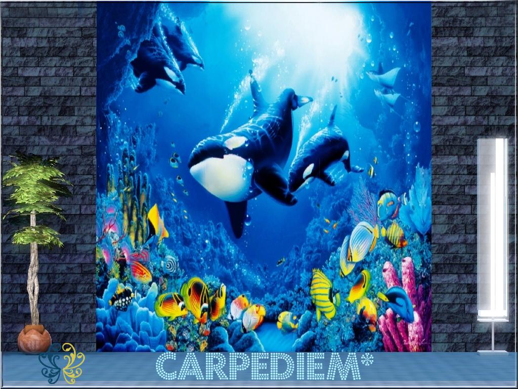 Carpediem sims may s 2012 for Pose poster mural