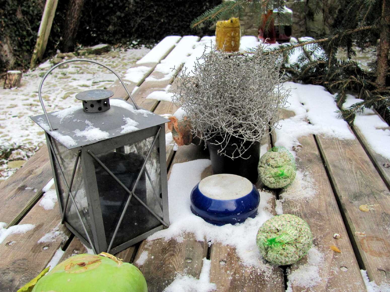 Garten Im Winter garten anders garten im winter kälteeinbrüche sind immer plötzlich