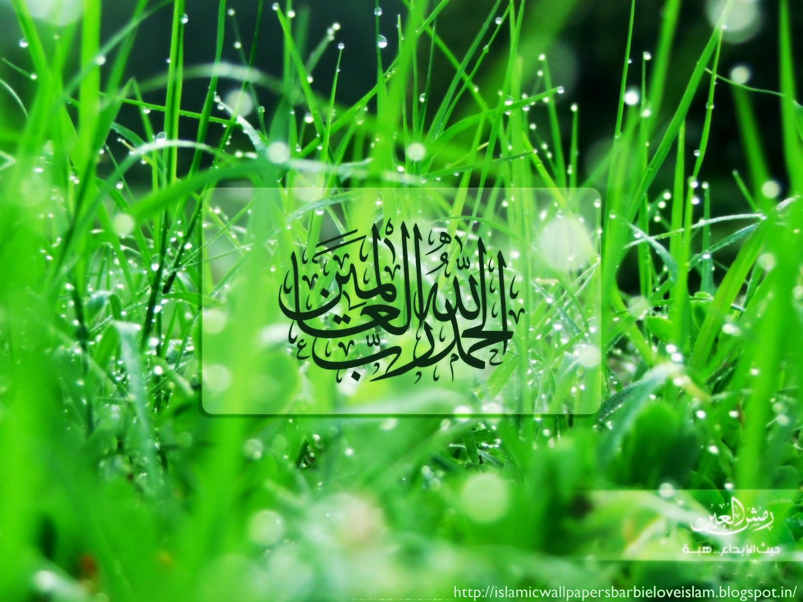 Free Islamic Wallpapers for Desktop