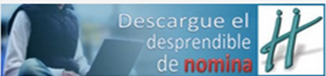 DESPRENDIBLE MAESTROS PITALITO